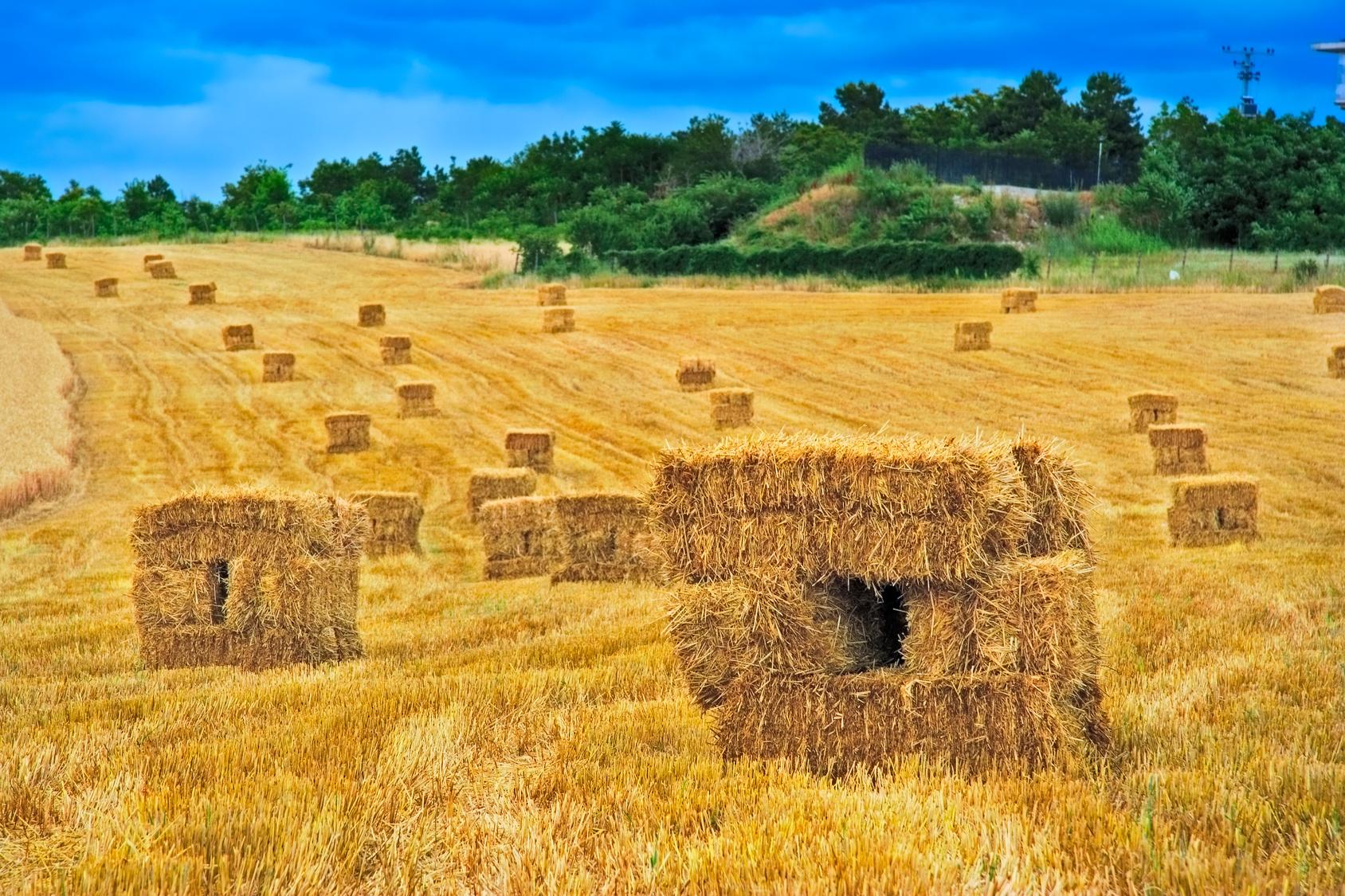 Ventajas de la bioconstruccion comprar casas de madera - Tocar madera casas ...