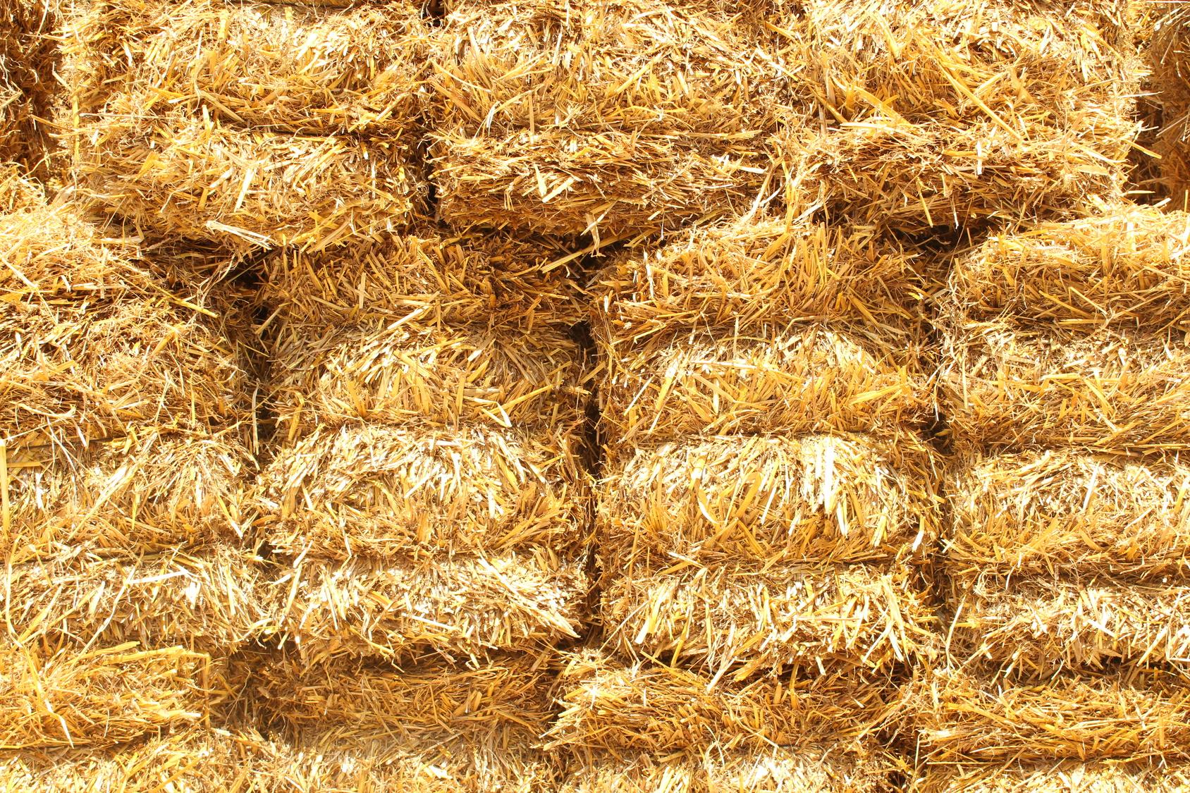 Construcci n respetuosa con el medio ambiente bioconstrucci n - Tocar madera casas ...